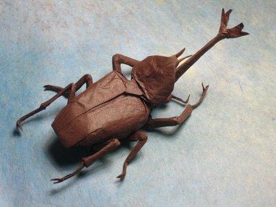Hercules Beetle, Opus 424   300x400