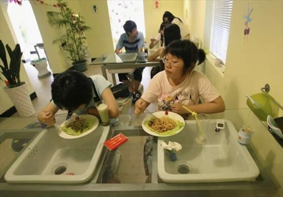 New Toilet Restaurant Opens In China Amazing News